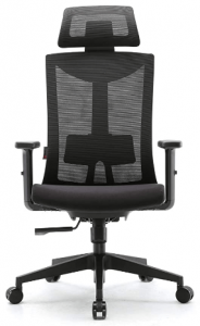 best chair with lumbar support